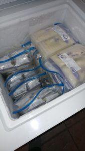 frozen milk